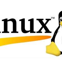 Cos'è Linux? Cosa posso fare con questo OS?
