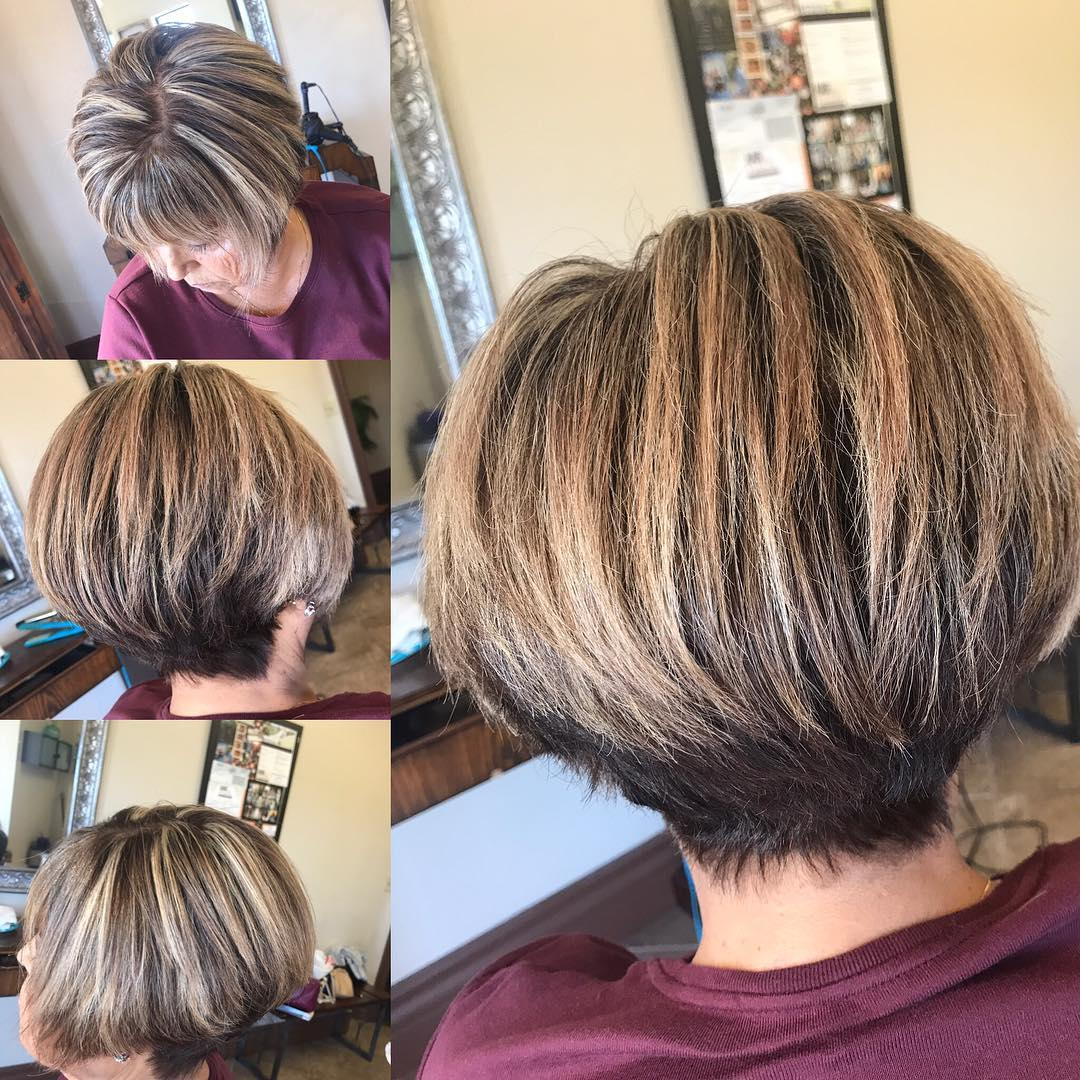 Stacked Very Short Pixie Bob