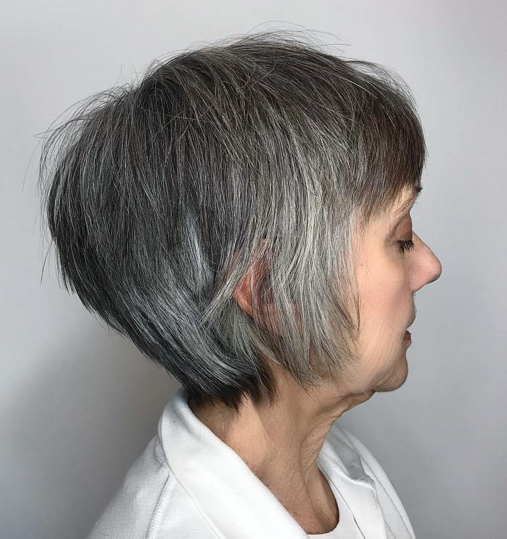 Gray and Silver Pixie Bob