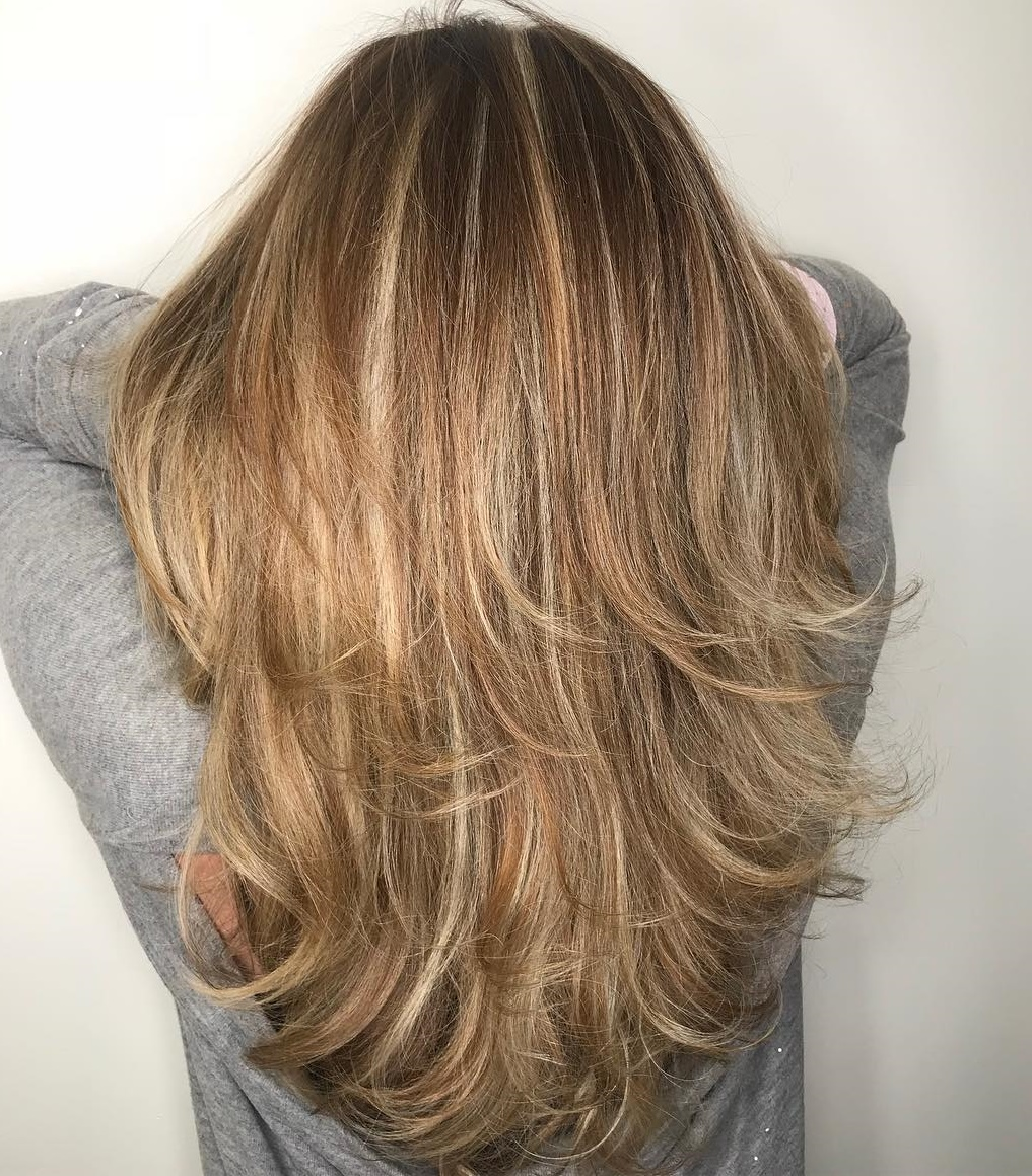 Feathered Dark Blonde Hairstyle with Highlights