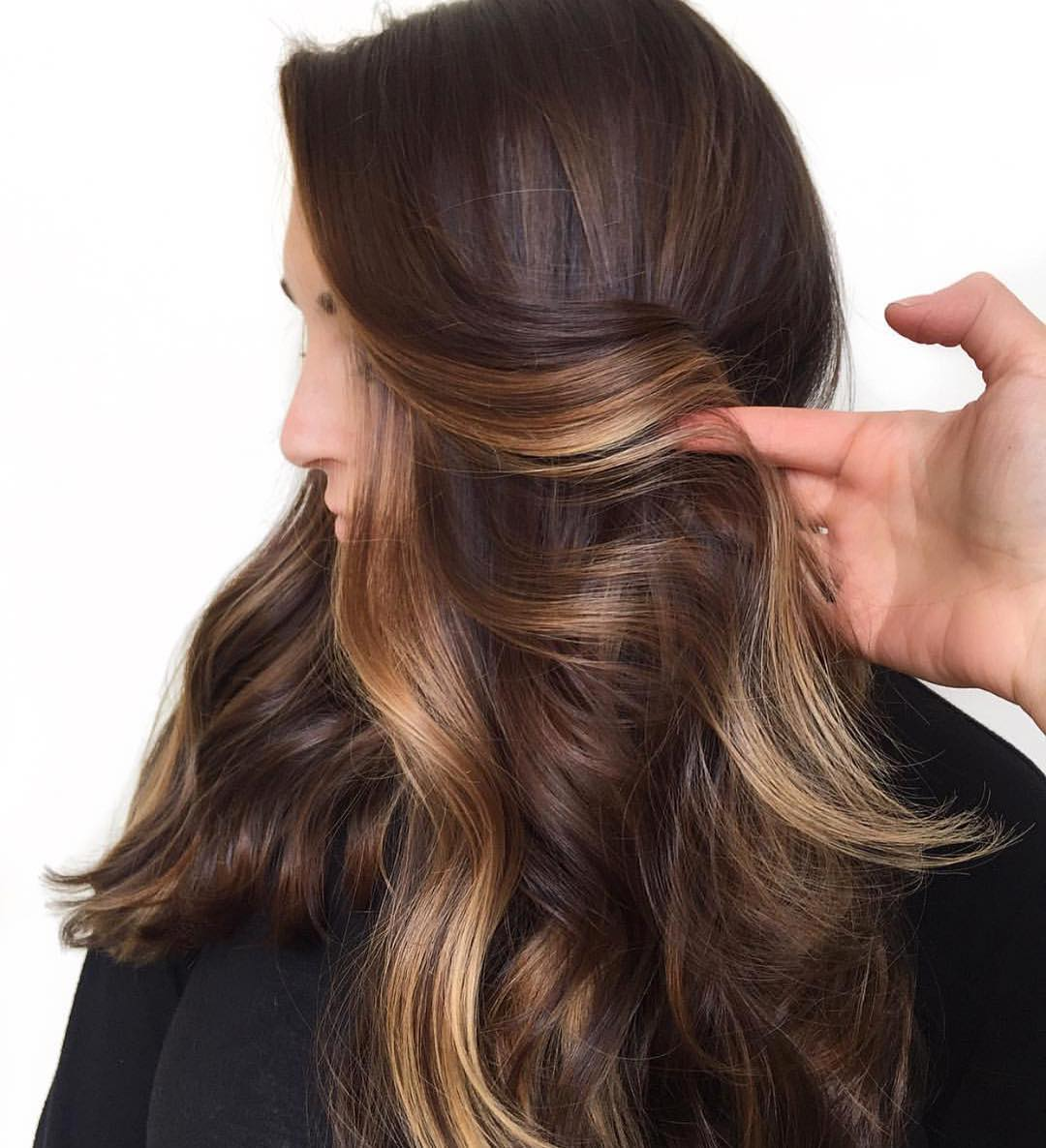 Warm Brown Highlights on Dark Hair