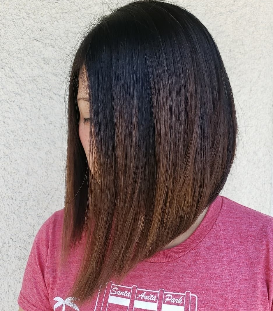 Dark Brown Long Bob with Highlights