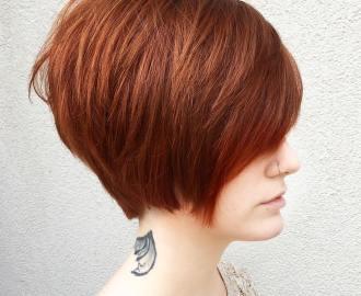 Ginger Red Pixie Bob