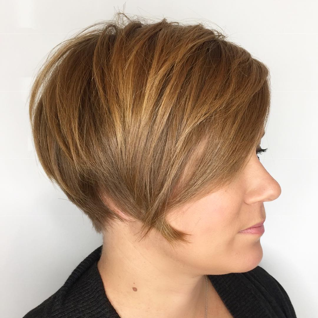 Light Honey Pixie Bob with Layers