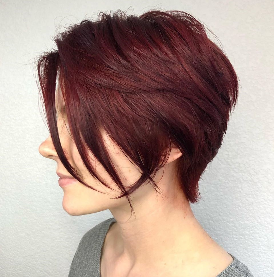 Short Dark Reddish Brown Hair