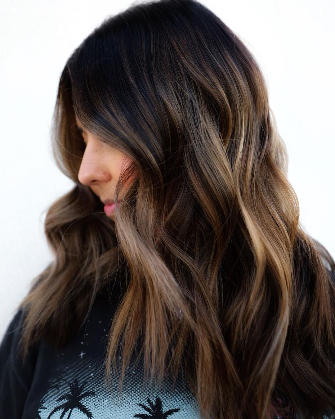 Chunky Highlights for Shoulder-Length Black Hair