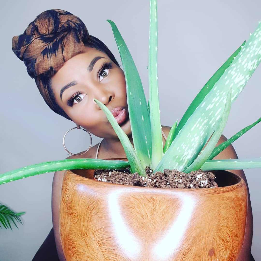 How to Use Aloe Vera and Its Benefits for Natural Hair
