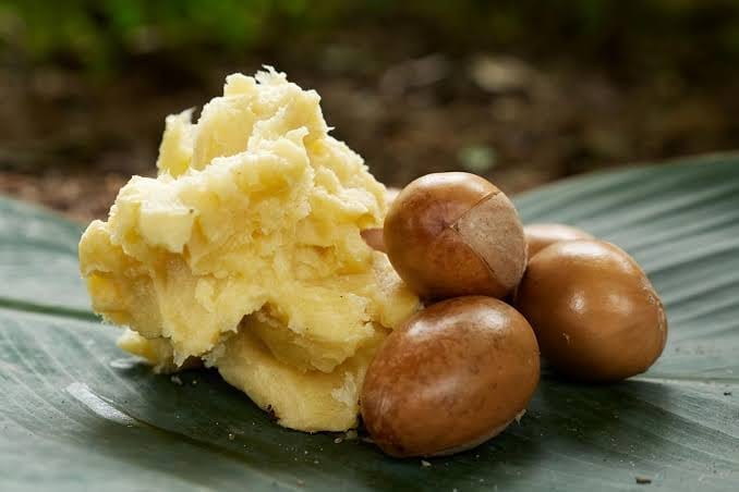 What Is Shea Butter for Hair