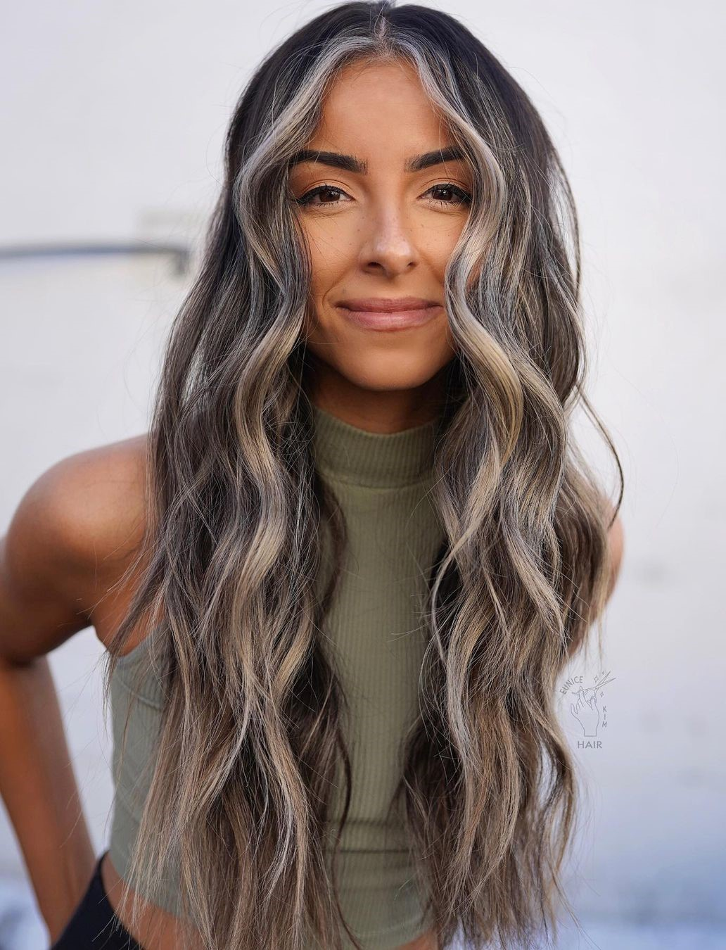 Dark Hair with Gray Highlights