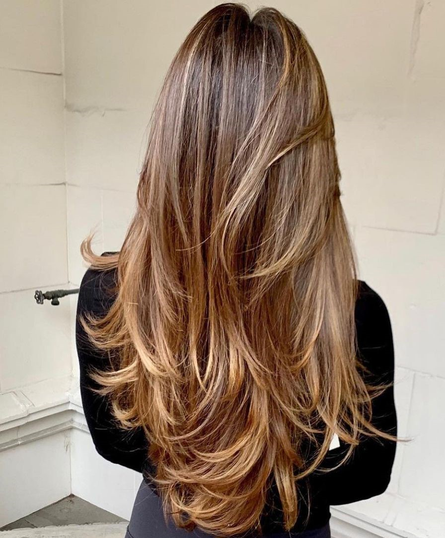 Highlighted V-Cut Hairstyle with Layers