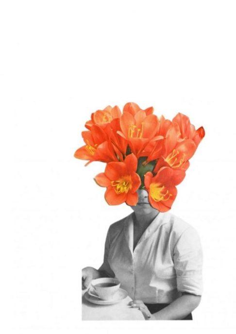 orange_hagarvardimon_1