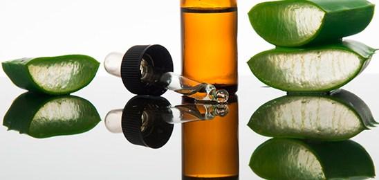 Reglamentación sobre productos herbarios y fitoterápicos