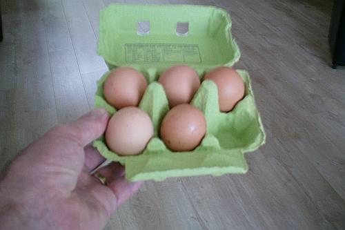 moet ik nu voortaan ook al het aantal eieren controleren?
