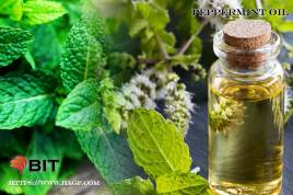 Supercritical CO2 Extraction of Peppermint Oil