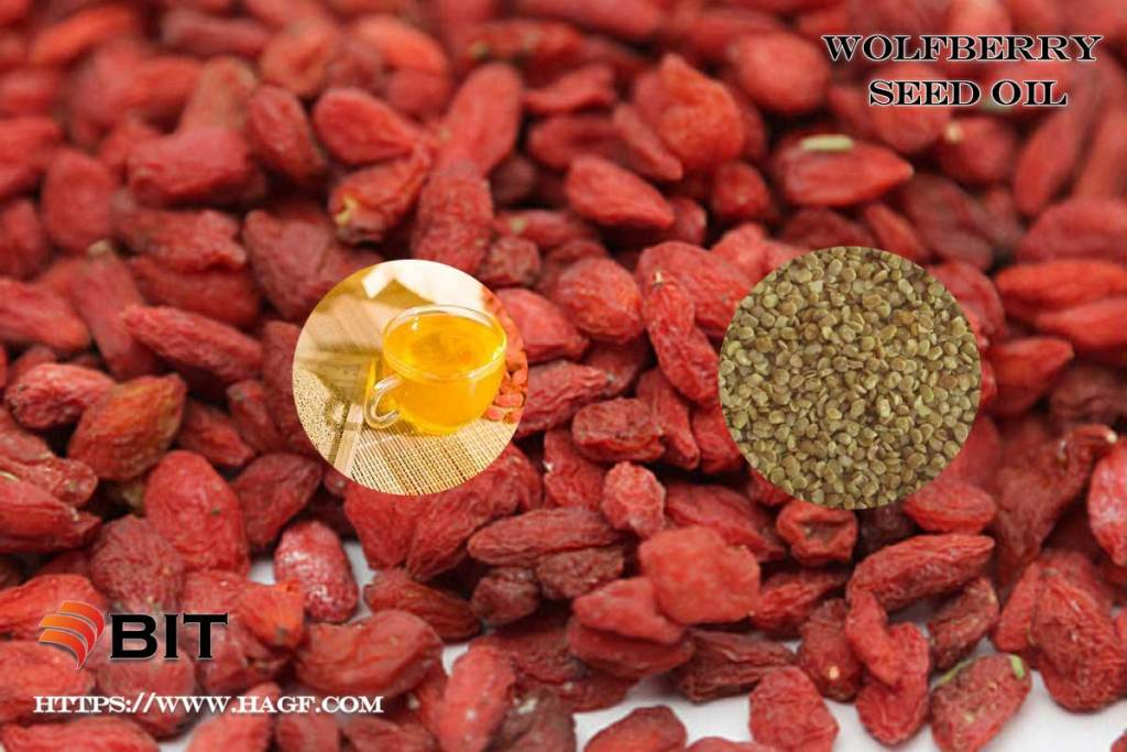 Supercritical CO2 Extraction of Wolfberry Seed Oil