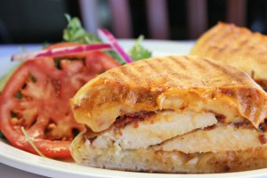MSBG_Chicken_Bacon_Panini