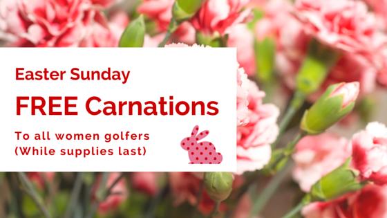 FREE Carnations