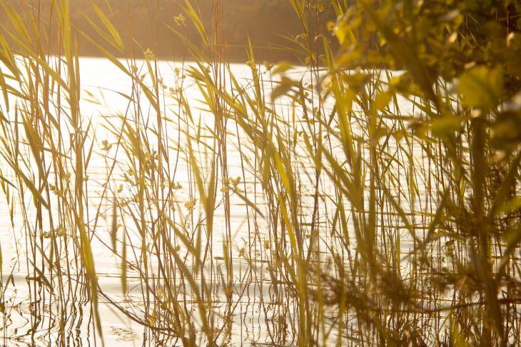 fotógrafo paisagens natureza lisboa portugal