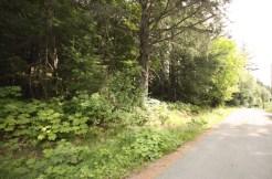 Hillside acreage near town