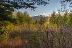 Blue Heron Estates Lot – 38 Mile Haines Highway