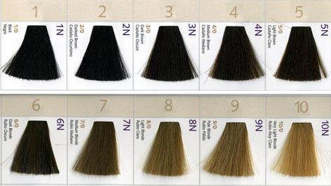 Hair Color Levels Again Hairagainsaloninfo