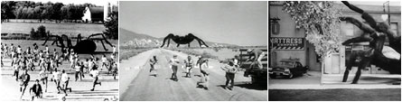 Mega Spiders