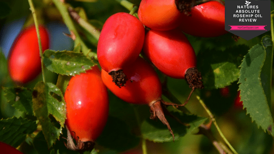 benefits of rose hip oil for hair