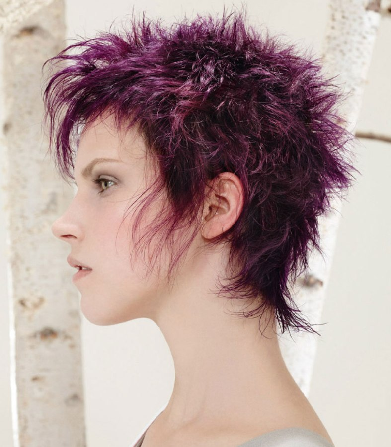 Punk Style With Short Purple Hair And Spikes