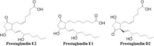 chemical structure of prostaglandins