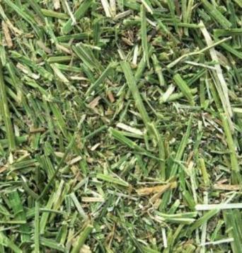Grass Chop