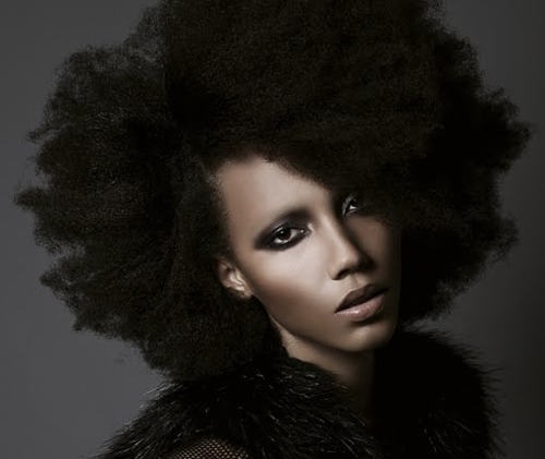 Huge Afro Hairstyle