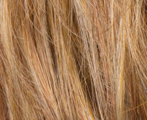 Cognac Wig Colour By Ellen Wille
