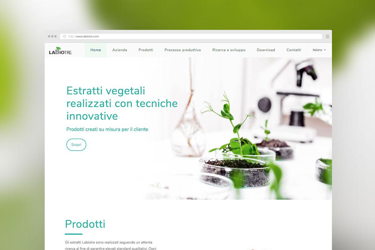 haisek design portfolio labiotre