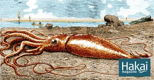 On the Track of the Giant Squid
