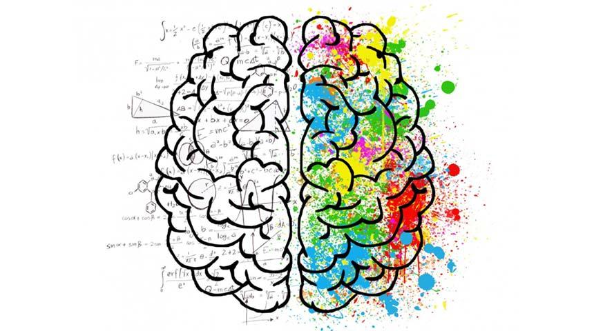 Neuropsicologia una especialidad de la psicologia