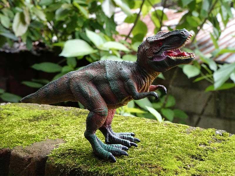 Tiranosaurios Rex - Cuentos de dinosaurios