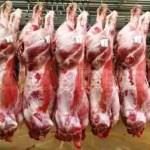 halal meat in japan