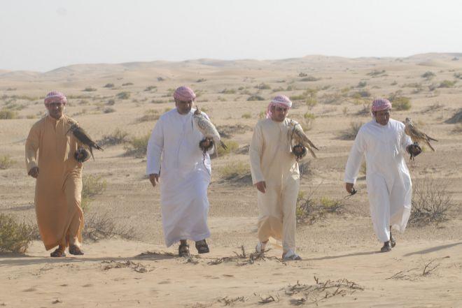 halconeros en Emiratos Árabes