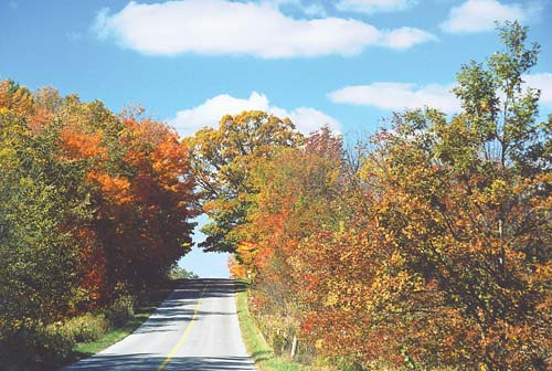 A burst of fall colours greet motorists during cool fall days