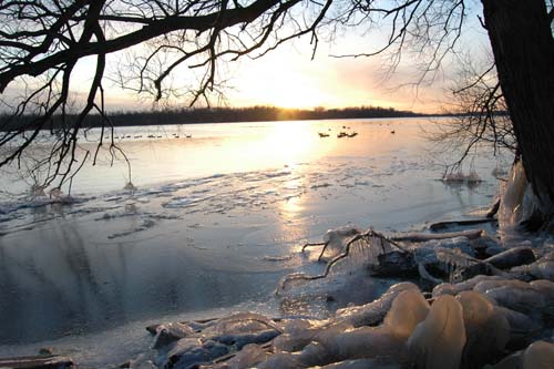 The sun reflects on the icy waters of the Grand River