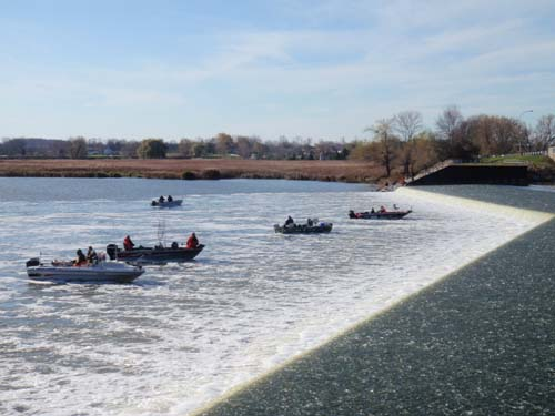 Paddle Boats disembark from the shore, prepared for their next adventure along the wondrous Grand River