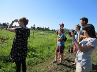 Collinwood Farm interview