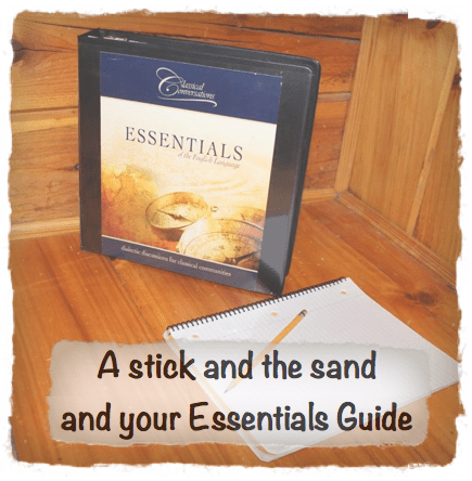 A Stick and the Sand and Your Essentials Guide