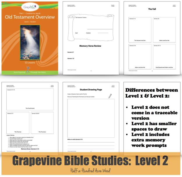 grapevine_level_2