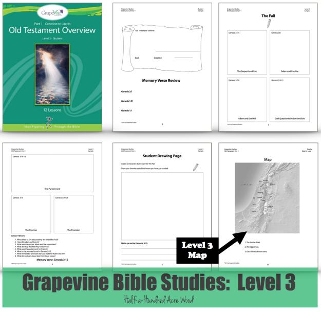 grapevine_level_3