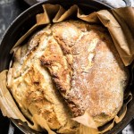 Cheaters No Knead Dutch Oven Sourdough Bread Half Baked Harvest