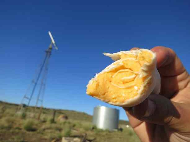 PCT Food - Cheese Tortilla