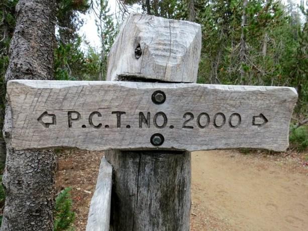 PCT NO 2000 Sign