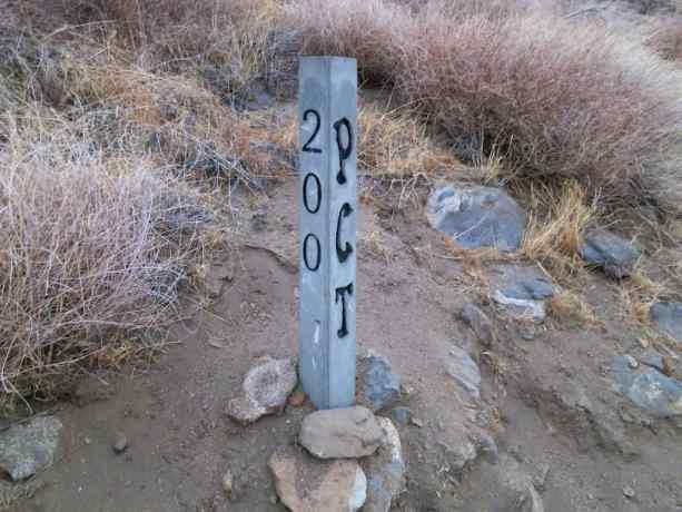 PCT Post Sign