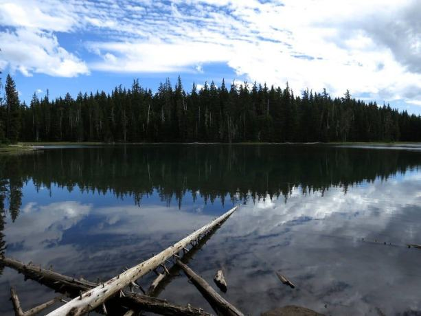 5 Mac Lake Oregon